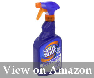 best carpet cleaner for pet stains reviews