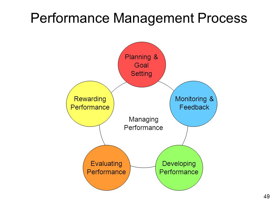 performance management and review process